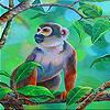 Monkey in th